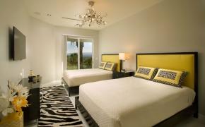 Med-Res-Vegas-views_Zebra-rm_large